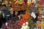Tops 66 - Buffalo screen